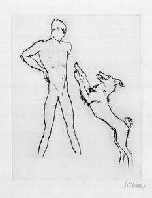 Junge mit anspringendem Hund