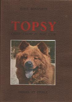Topsy chow-chow au poil d'or