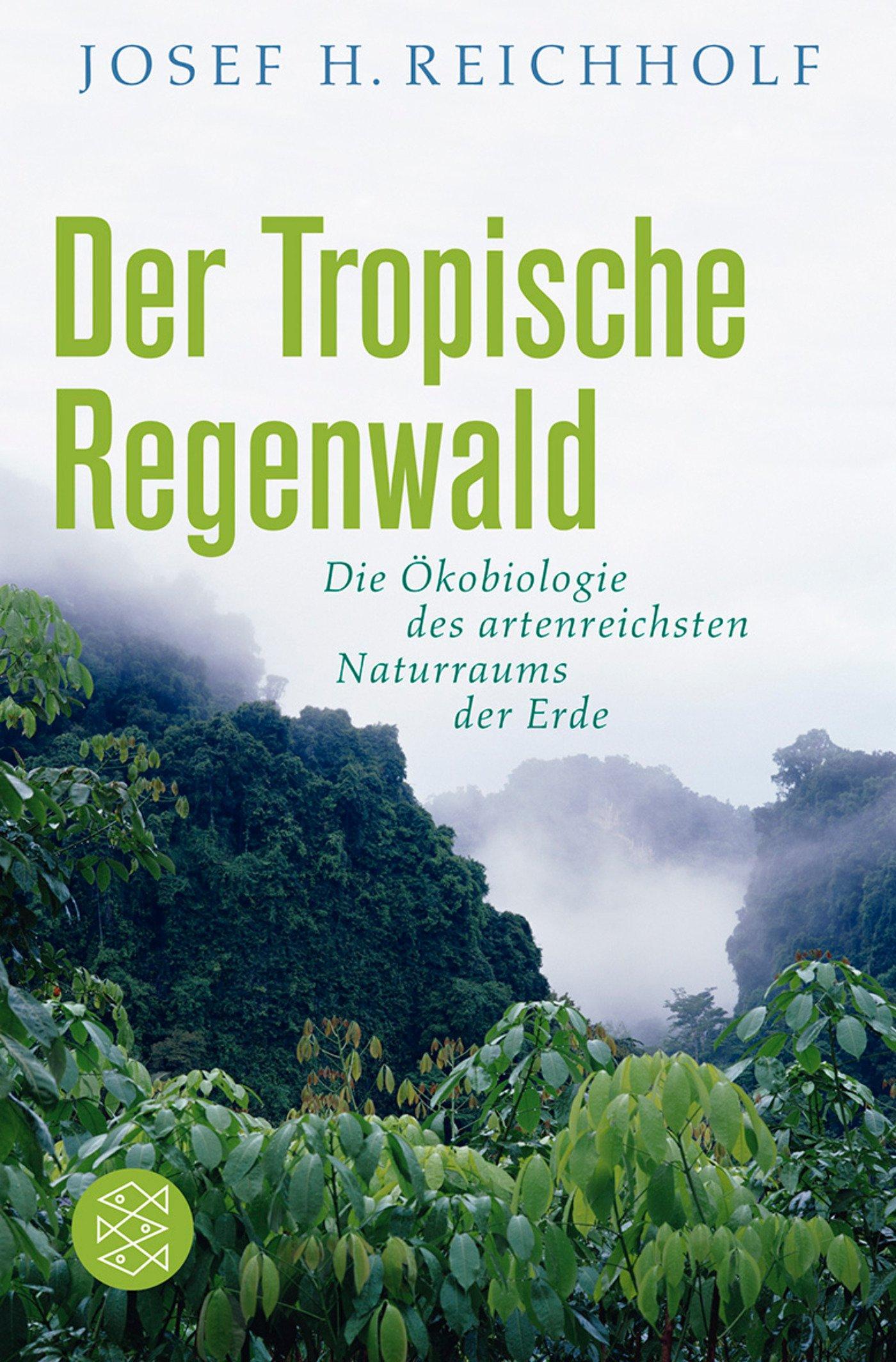 Der tropische Regenwald