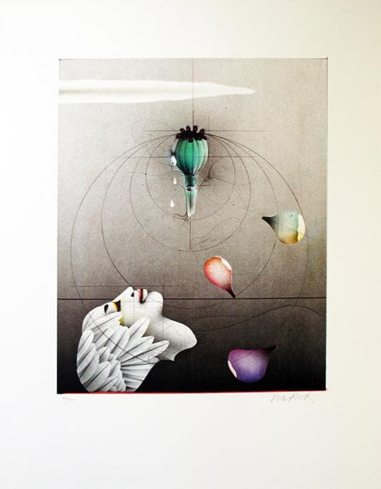 ›Kunst und Anästhesie‹