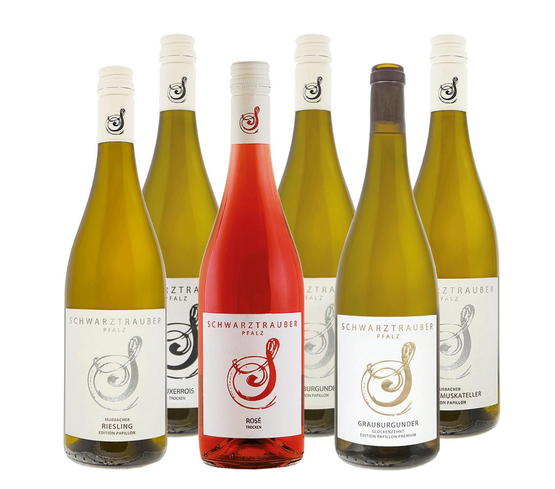 * SFB Wein-Probierpaket ›CARPE DIEM‹